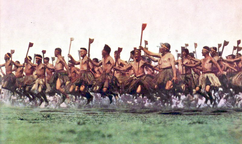 maorii